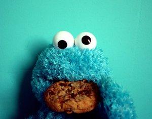 Cookie_Monster_2_by_ZoeWieZo