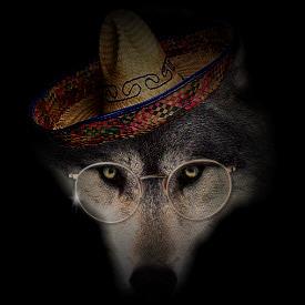 wolf_W_glasses