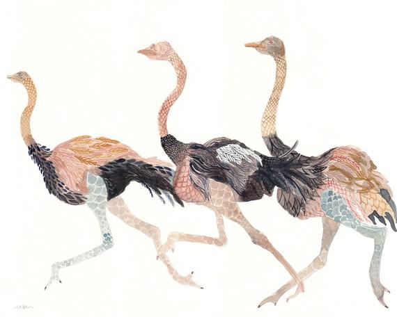 ostrich-unitedthread-etsy